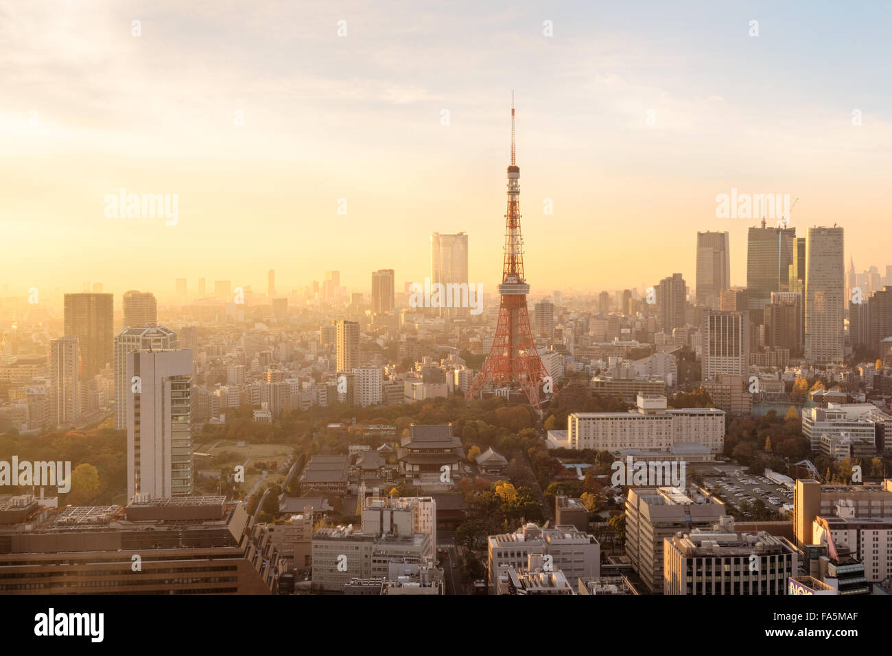 Tokyo, Japan - Dec 12, 2015: Night view of Tokyo Skylines.Tokyo  is both the capital and largest city of Japan. - Stock Image