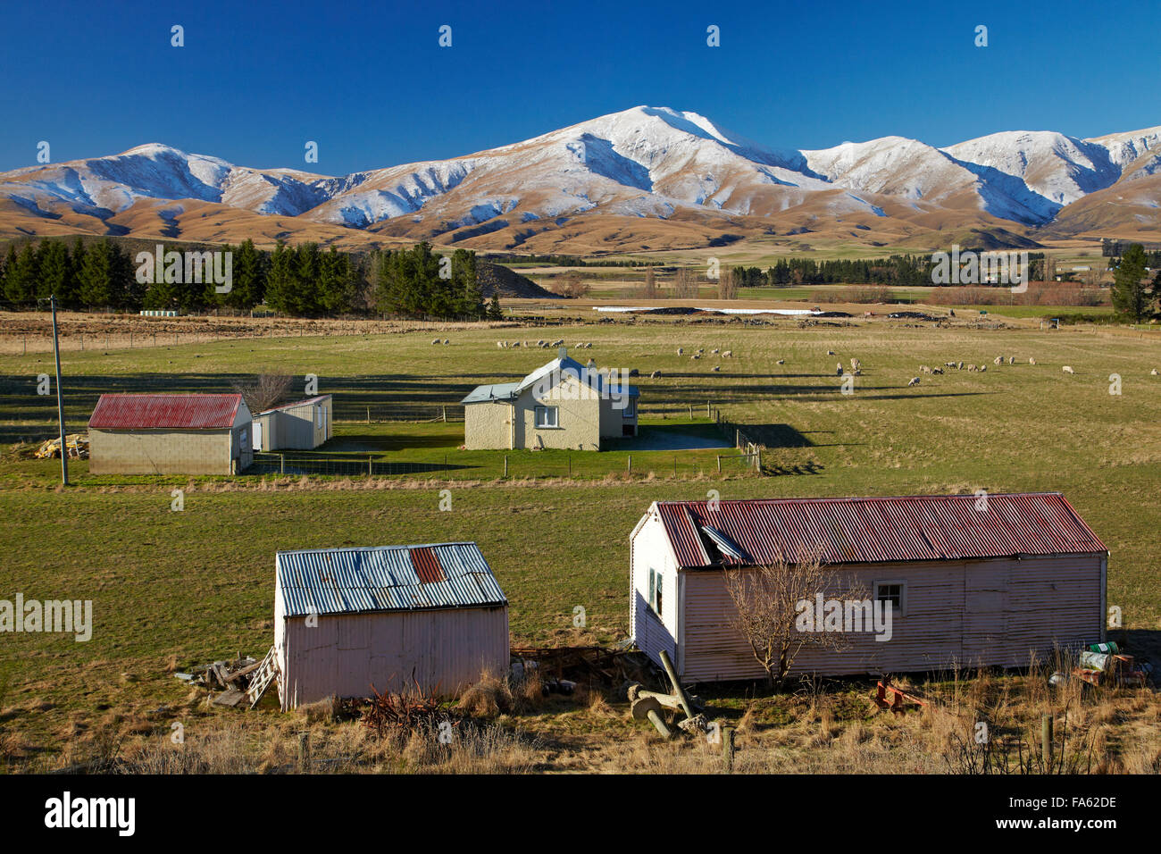 Old farm buildings and Kakanui Mountains, Maniototo, Central Otago, South Island, New Zealand - Stock Image