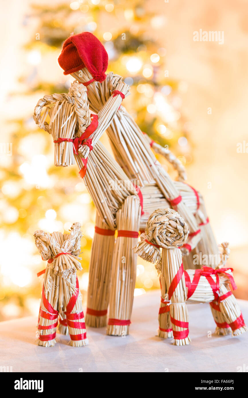 Straw Yule goat and baby Yule goats in front of Christmas tree  Model Release: Yes.  Property Release: No. - Stock Image
