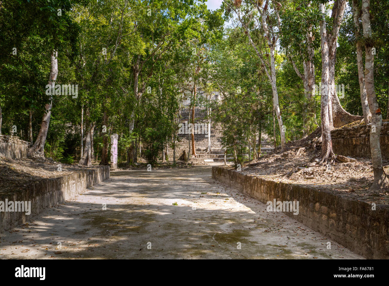 Ballcourt (Structure 11), Dates to 731 AD, Calakmul Mayan Archaeological site, Campeche, Mexico - Stock Image