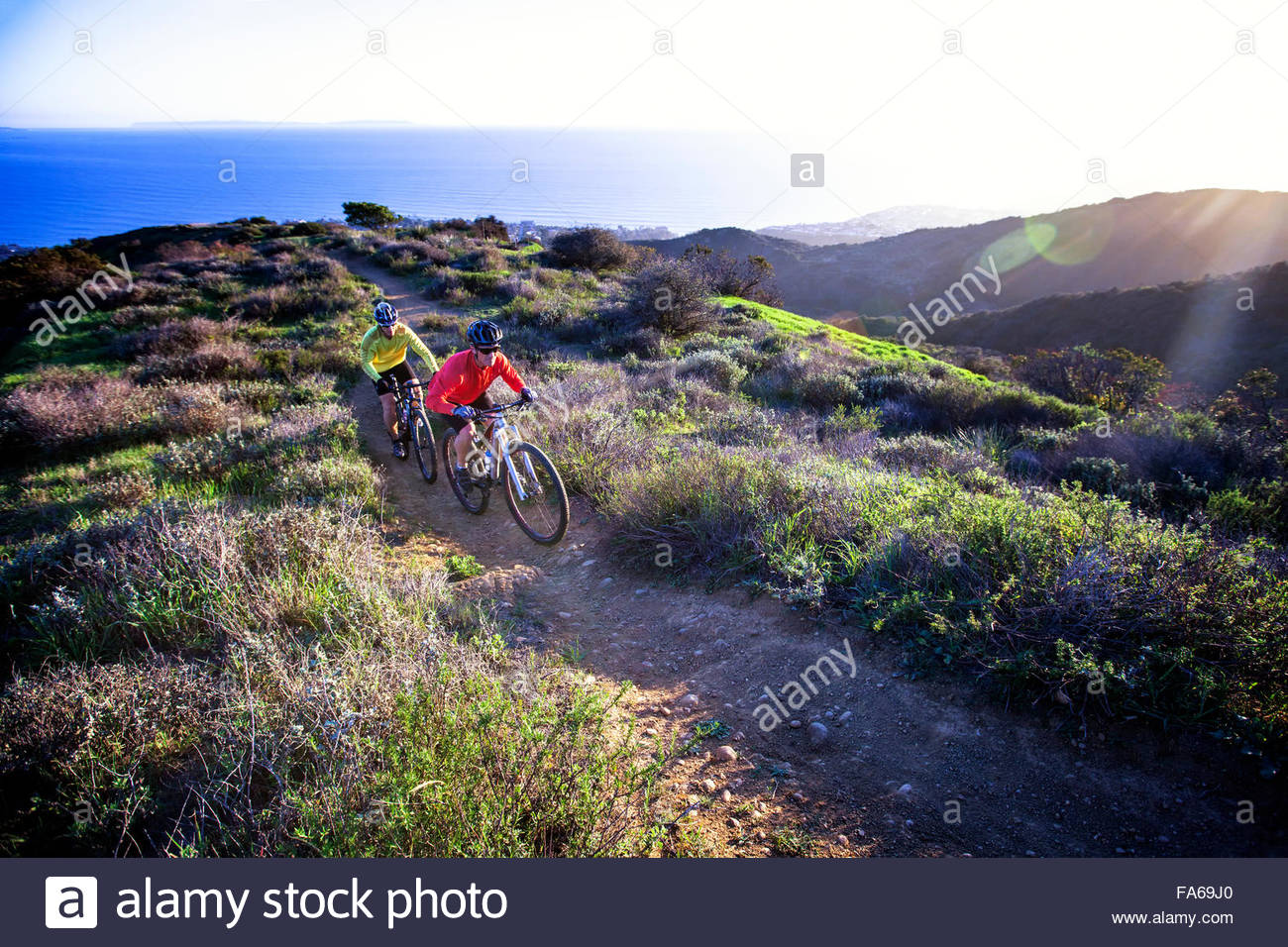 Two men mountain biking, California, America, USA - Stock Image