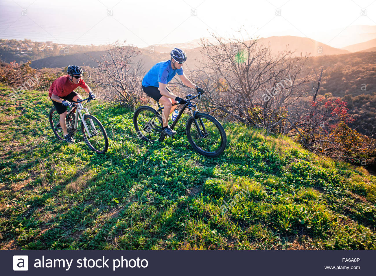 Two men mountain biking along trail, California, America, USA - Stock Image