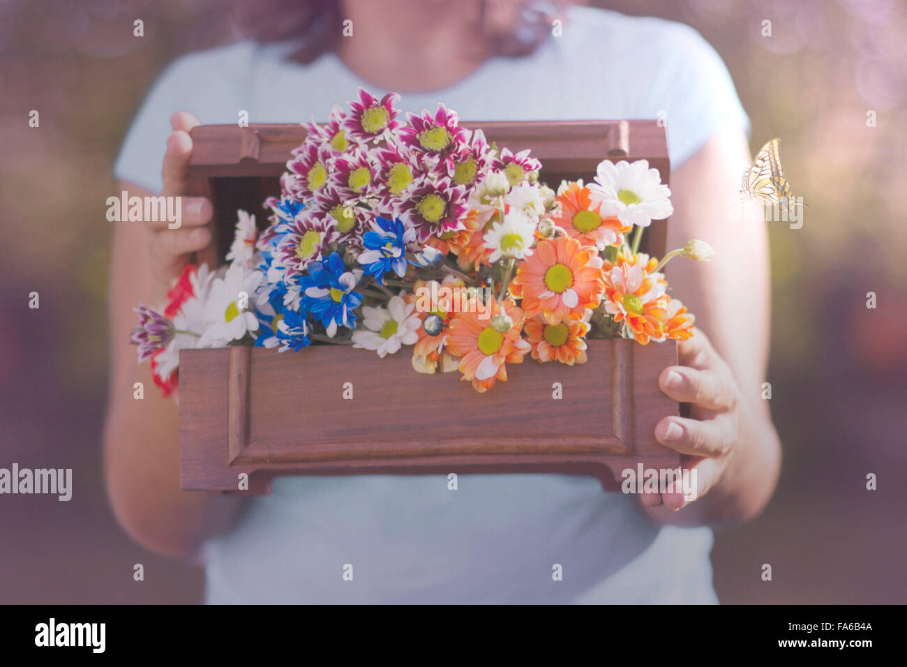 Butterfly flying next to a woman holding box of flowers Stock Photo