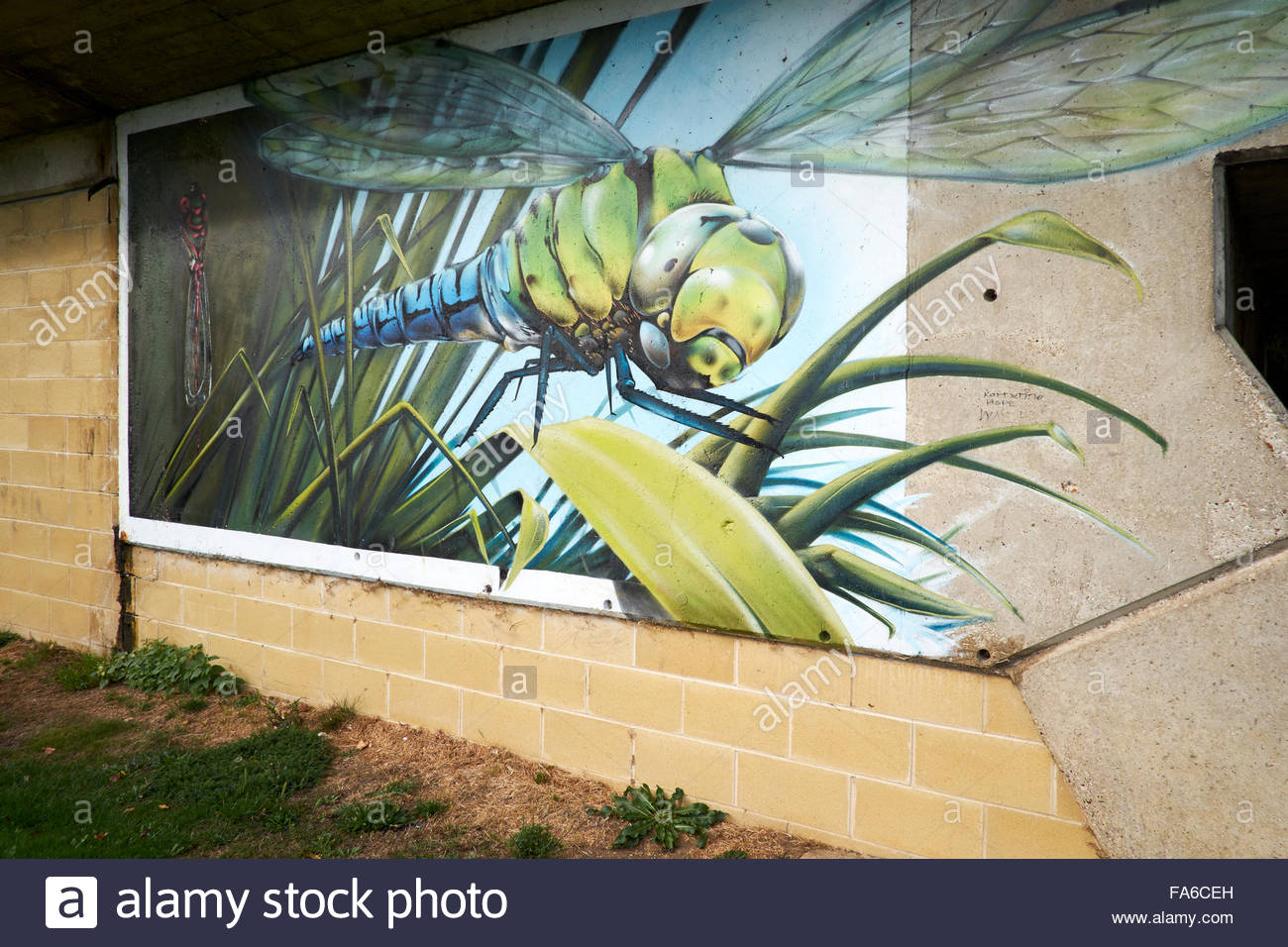 Dragonfly Art Stock Photos & Dragonfly Art Stock Images - Alamy