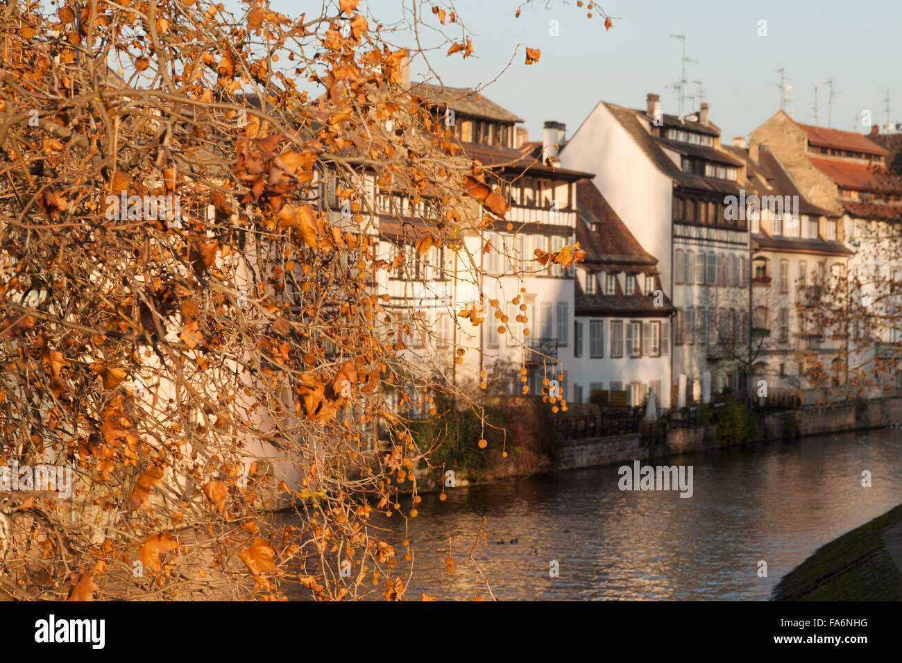 Houses along the River Ill in Petite France in autumn, Strasbourg Old Town, France Europe - Stock Image