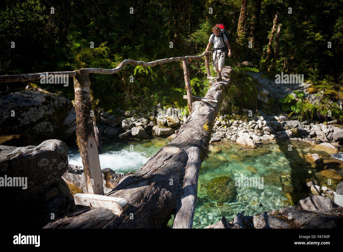 A remote log-bridge crossing in Chile's Cochamó, a valley accessible only by foot through 4000 year-old - Stock Image