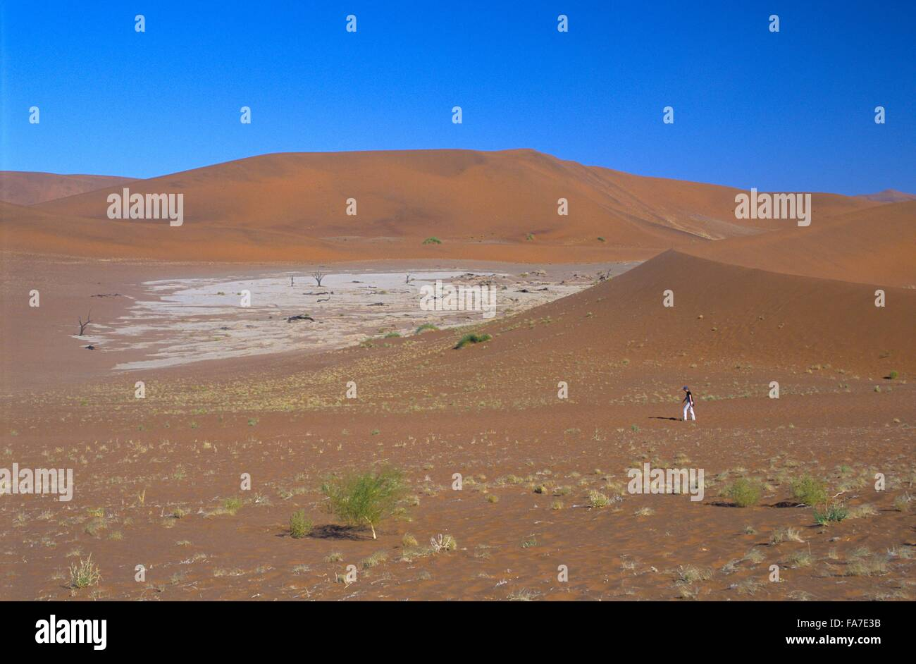 Namibia, Namib-Naukluft National park, Sossusvlei, hike on trail // Namibie, Namib-Naukluft National park, Sossusvlei, - Stock Image