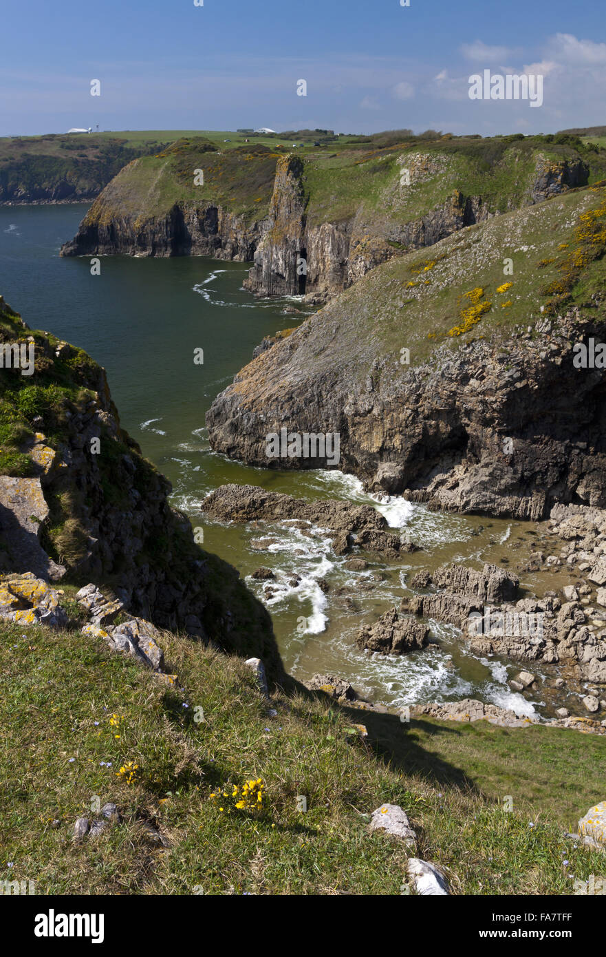 View across the cliffs at Lydstep Headland in Pembrokeshire, Wales. - Stock Image