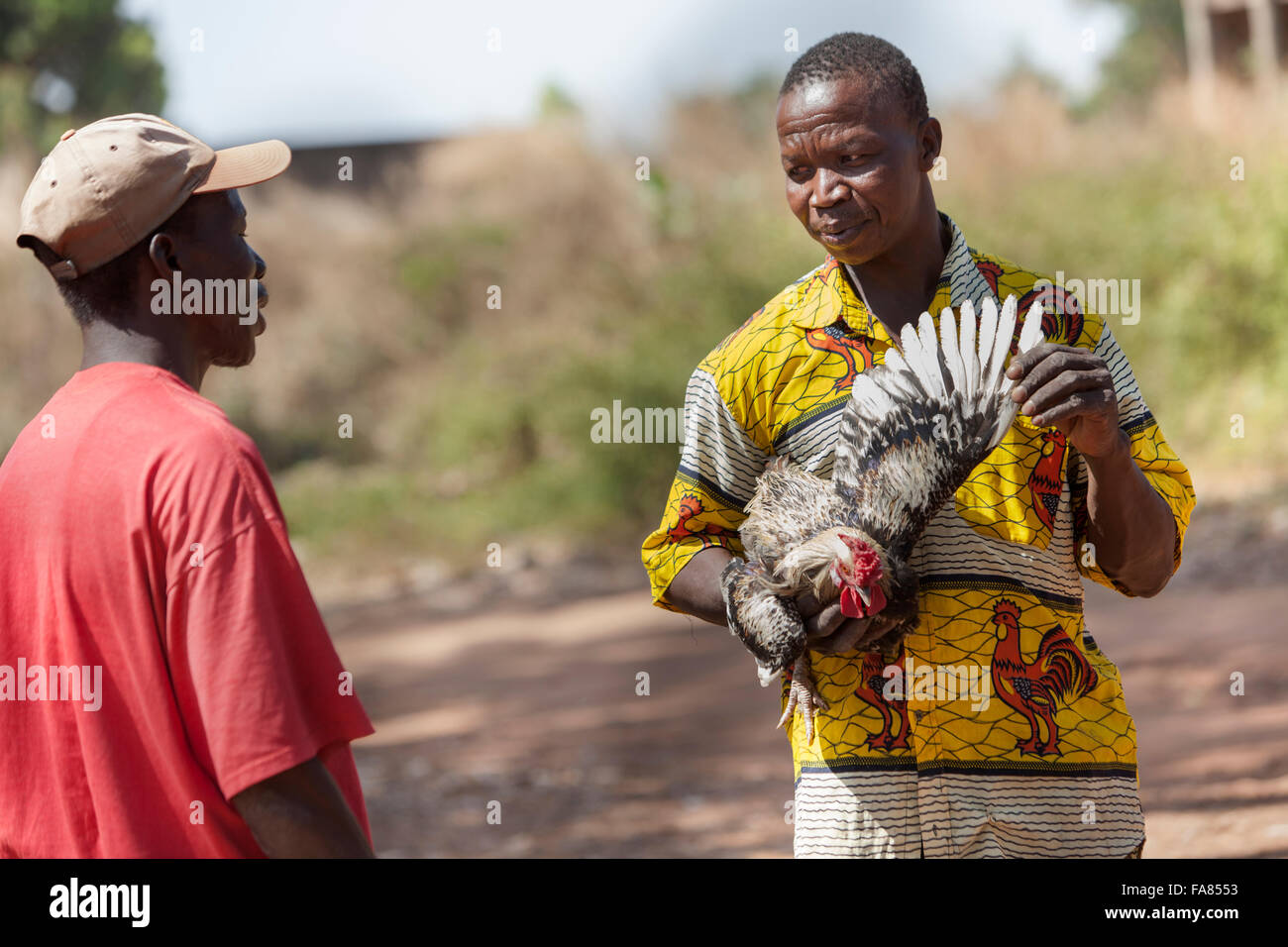 A vendor sells chickens at the poultry market in Banfora, Burkina Faso. - Stock Image