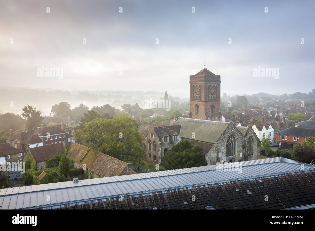 St. Mary's Church, Petworth, seen from the roof of the house at Petworth House and Park, West Sussex. The deer - Stock Image
