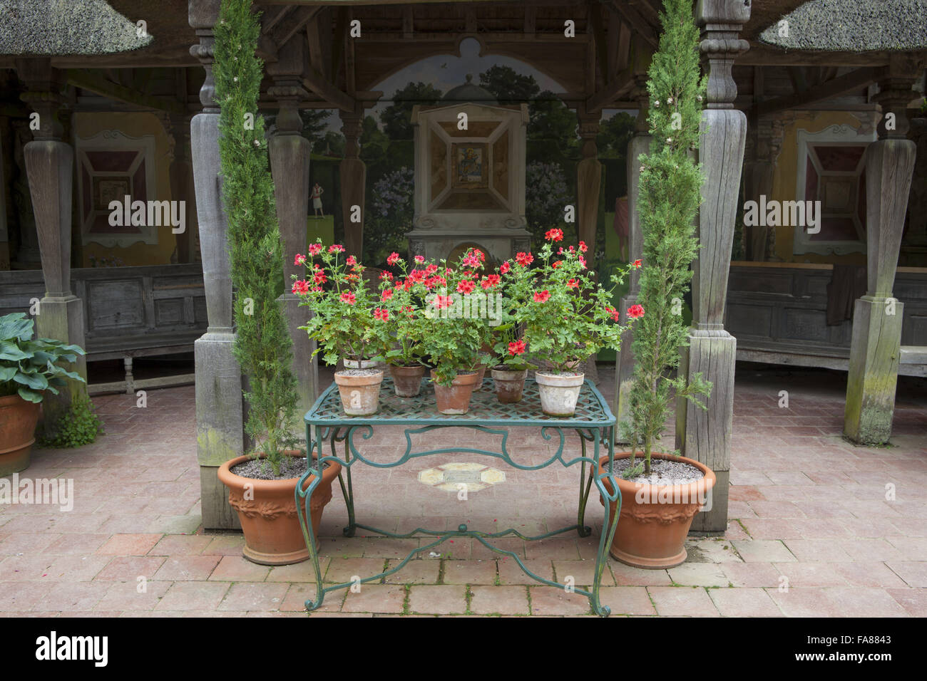 Display of Pelargonium 'Scarlet Unique' in terracotta pots in The Italian Garden at Hidcote, Gloucestershire, - Stock Image