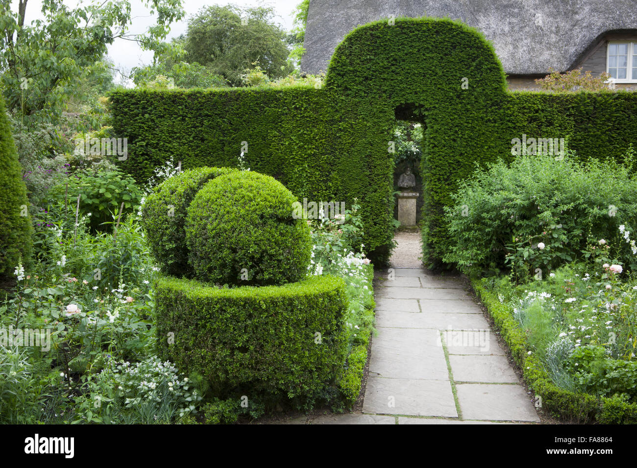 The White Garden With Yew Hedges And Box Topiary At Hidcote Stock Photo Alamy