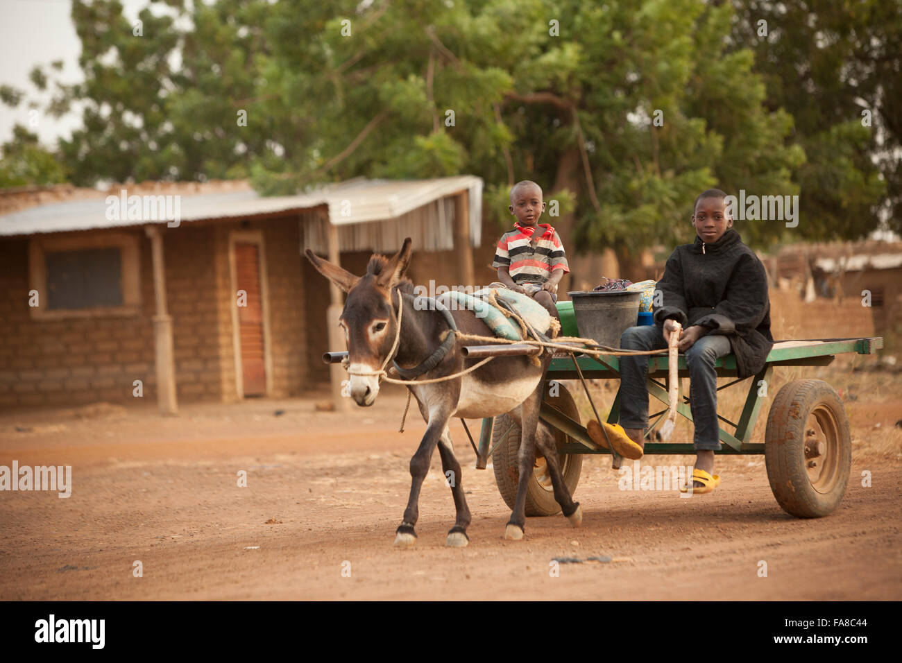 Children ride in a donkey-drawn cart in Sourou Province, Burkina Faso. - Stock Image