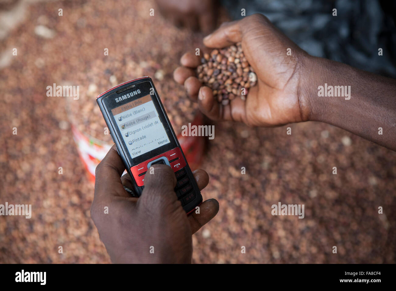 A commodities buyer uses mobile phone technology to compare prices at various markets within Banfora Department, - Stock Image