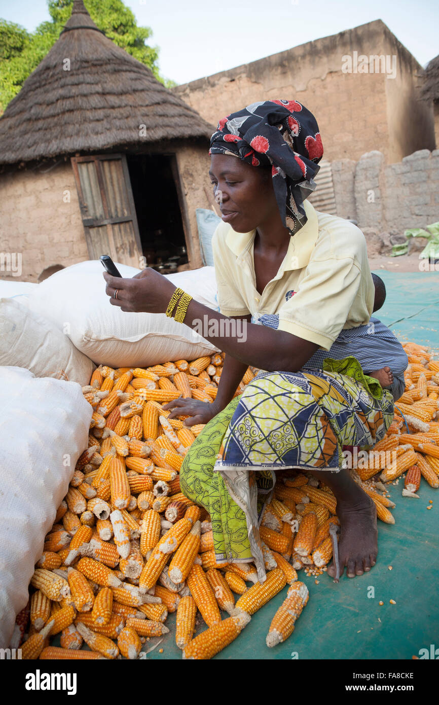 A farmer uses mobile phone technology to compare prices at various markets within Banfora Department, Burkina Faso, - Stock Image