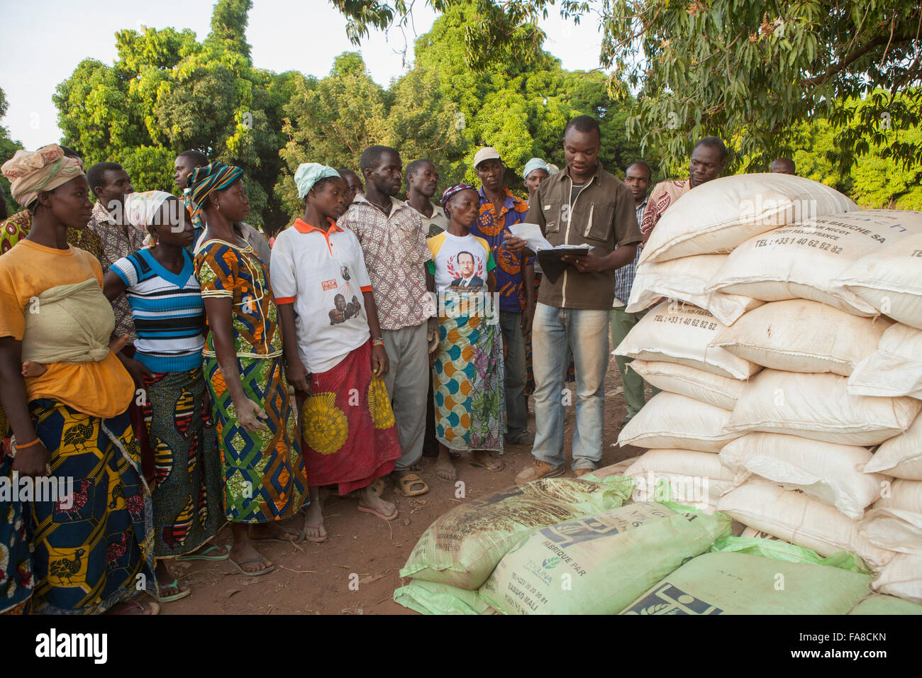 Small farmers receive sacks of seed and fertilizer at a distribution in Banfora Department, Burkina Faso. - Stock Image