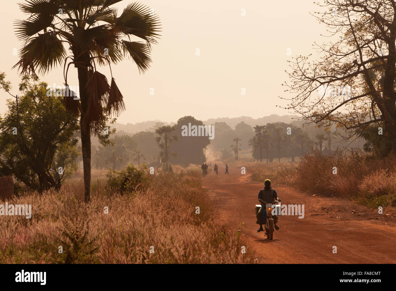 A motorcyclist travels down a dirt road in Tengréla Village, Banfora Department, Burkina Faso. - Stock Image