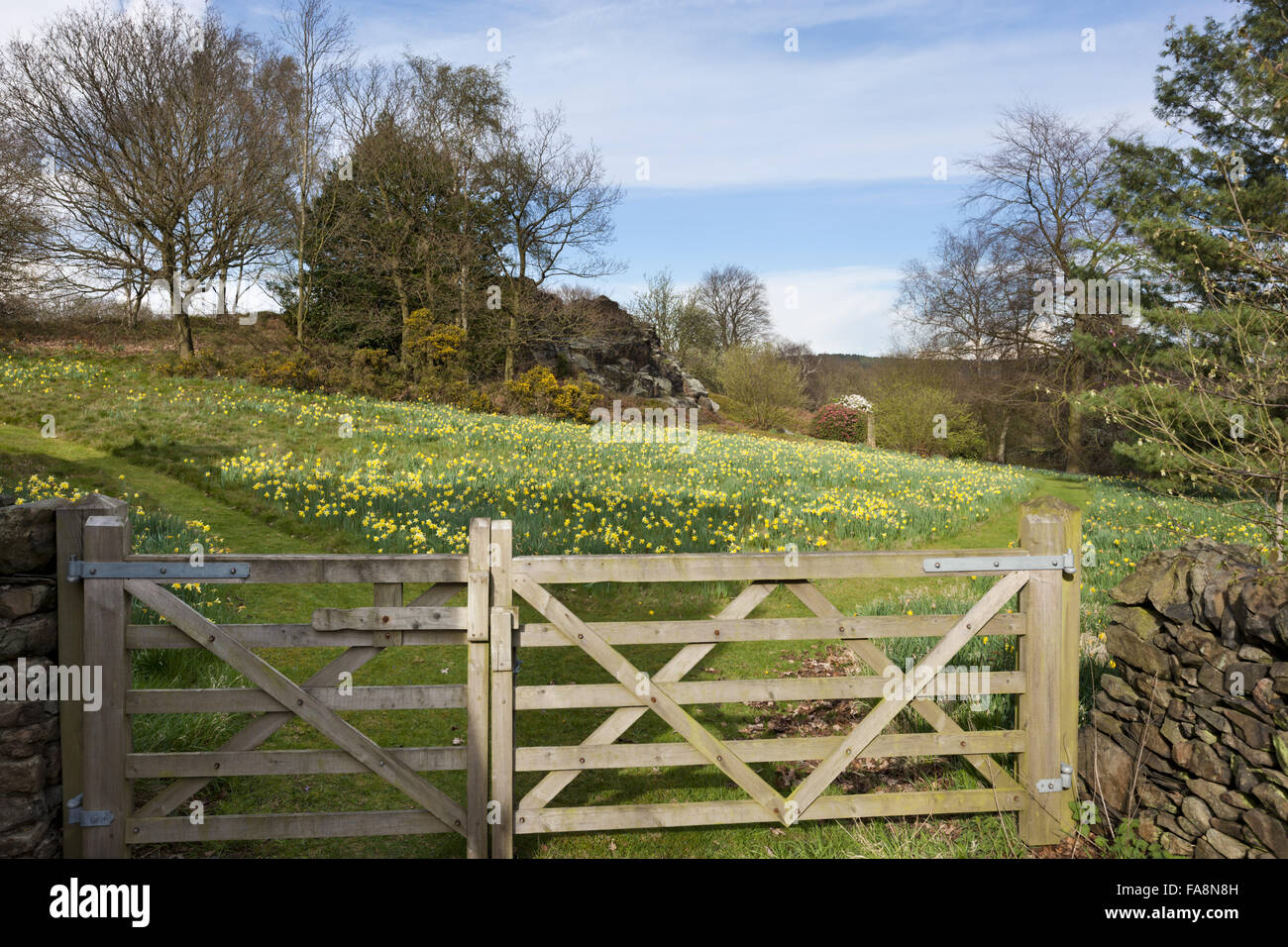 The rocky outcrop seen from the stableblock at Stoneywell, Leicestershire. - Stock Image