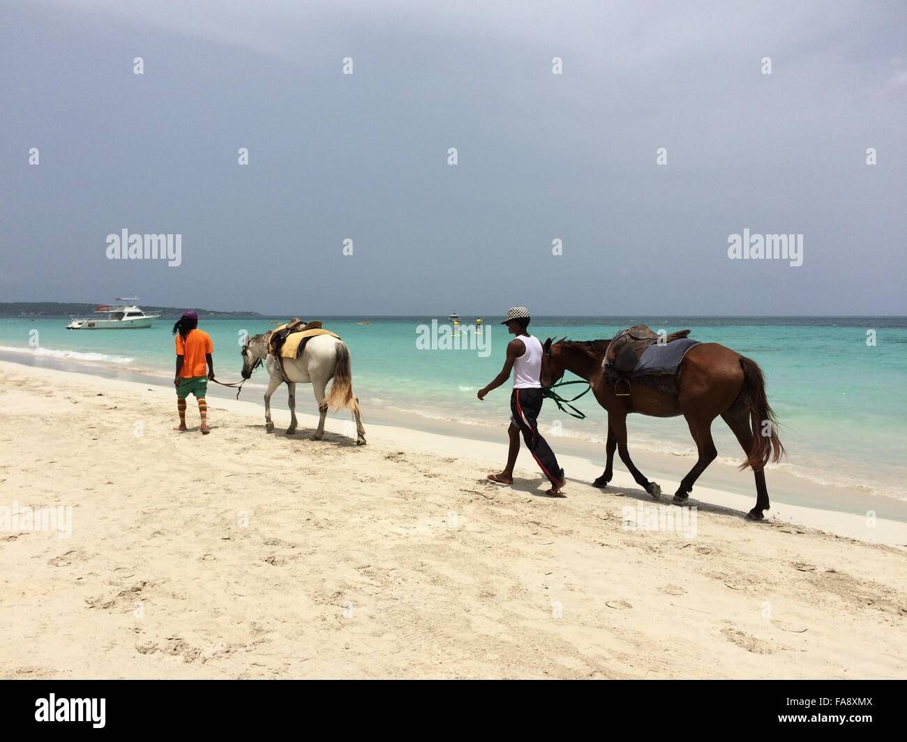 Horses Walking on Seven Mile Beach in Negril, Jamaica - Stock Image