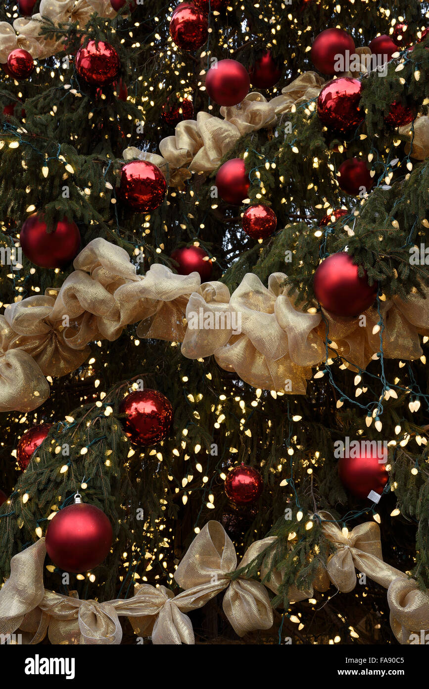 Red balls with golden ribbons and lights on a giant outdoor red balls with golden ribbons and lights on a giant outdoor christmas tree toronto aloadofball Image collections