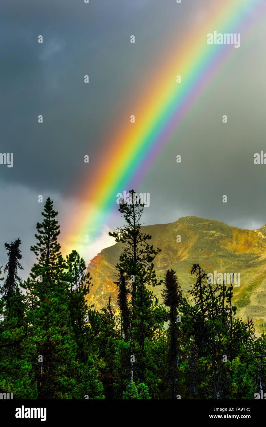 rain bow over Mount Kerkeslin, Jasper National Park - Stock Image