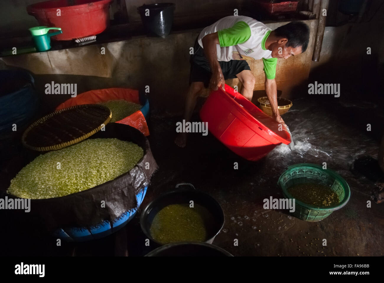 A man pouring waste water as he washes mung beans in a home food processing industry. - Stock Image