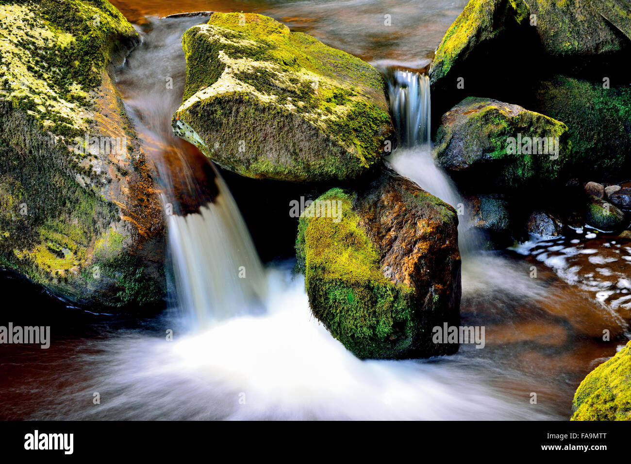 Germany, Bavaria. Small cascade of a mountain creek in National Park Bavarian Forest Stock Photo