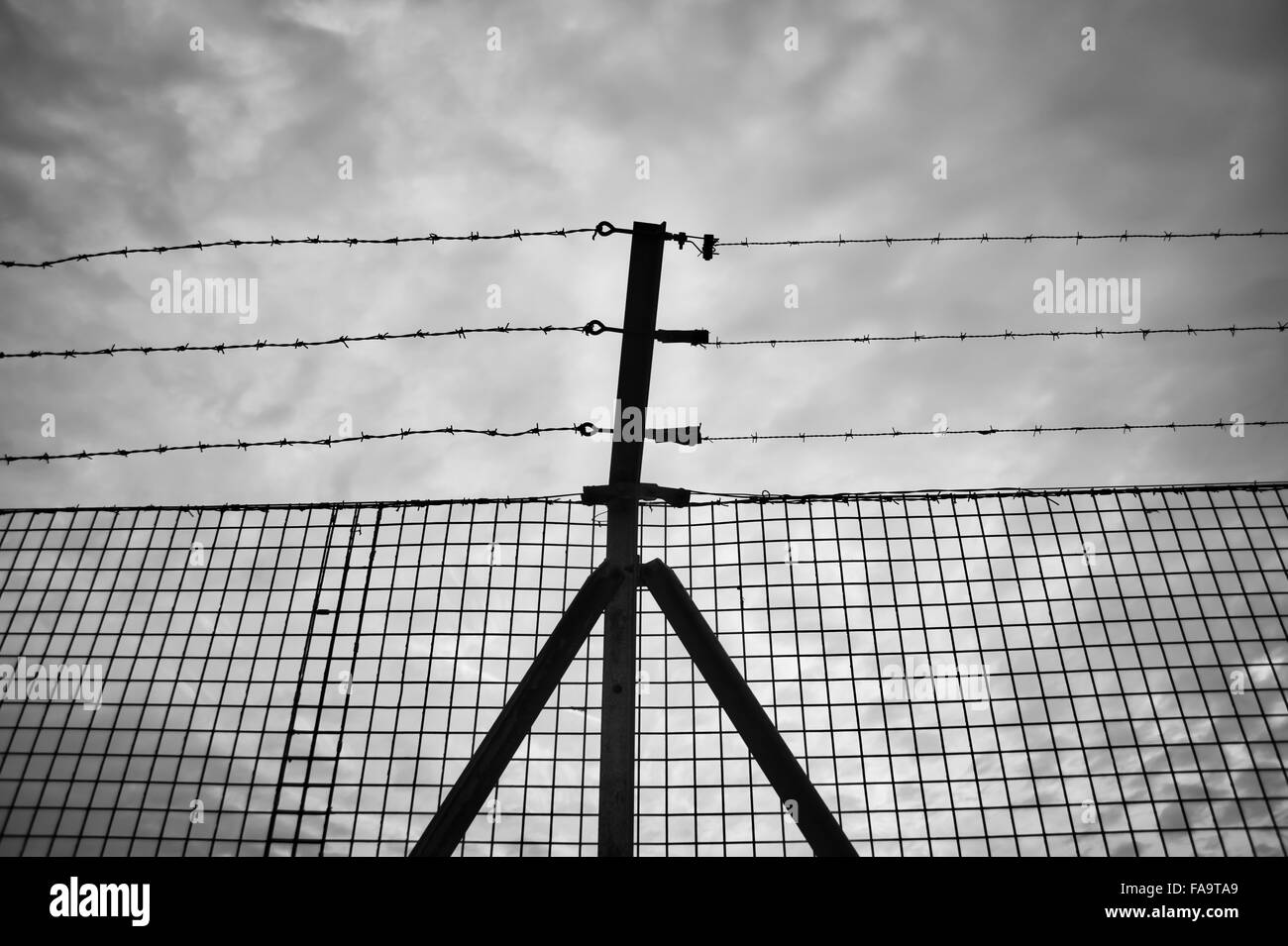 barbed wire border fence - Stock Image