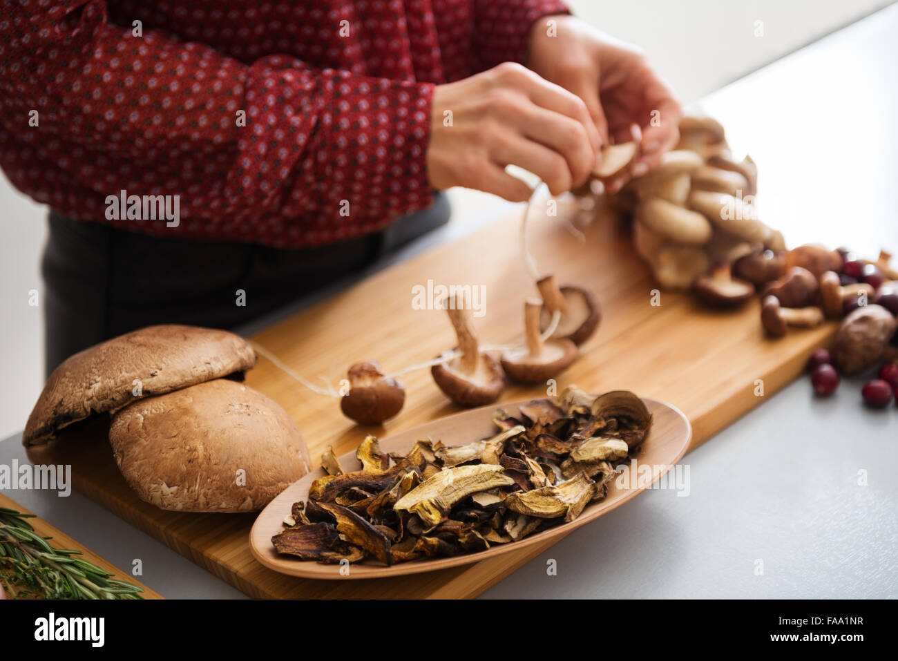 A woman's elegant hands are stringing mushrooms together as she is preparing a fall meal. Soon, the heady aroma - Stock Image