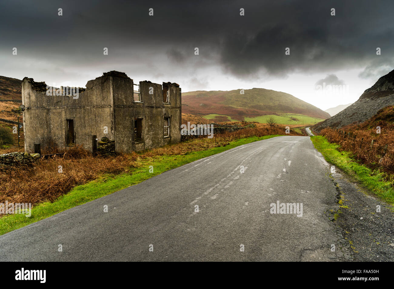 The broken shell of an abandoned and ruined house,  next to a narrow country backroad in a remote valley in Gwynedd, - Stock Image