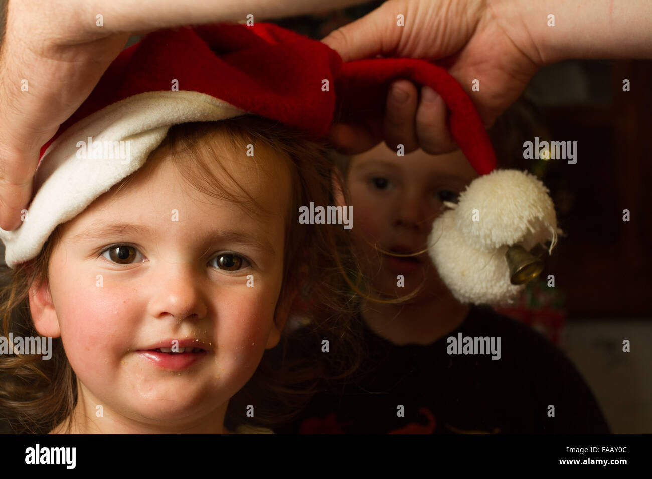 9959bbdc Santa hat being put on little girl by adult while brother looks on in the  background. Johann Van Tonder / Alamy Stock Photo