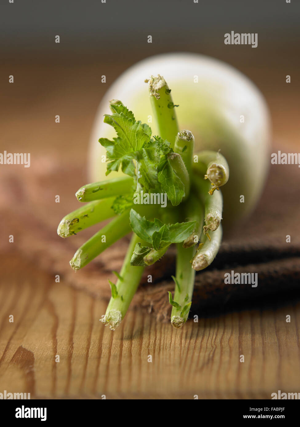 close up of the chinese redish on the table - Stock Image