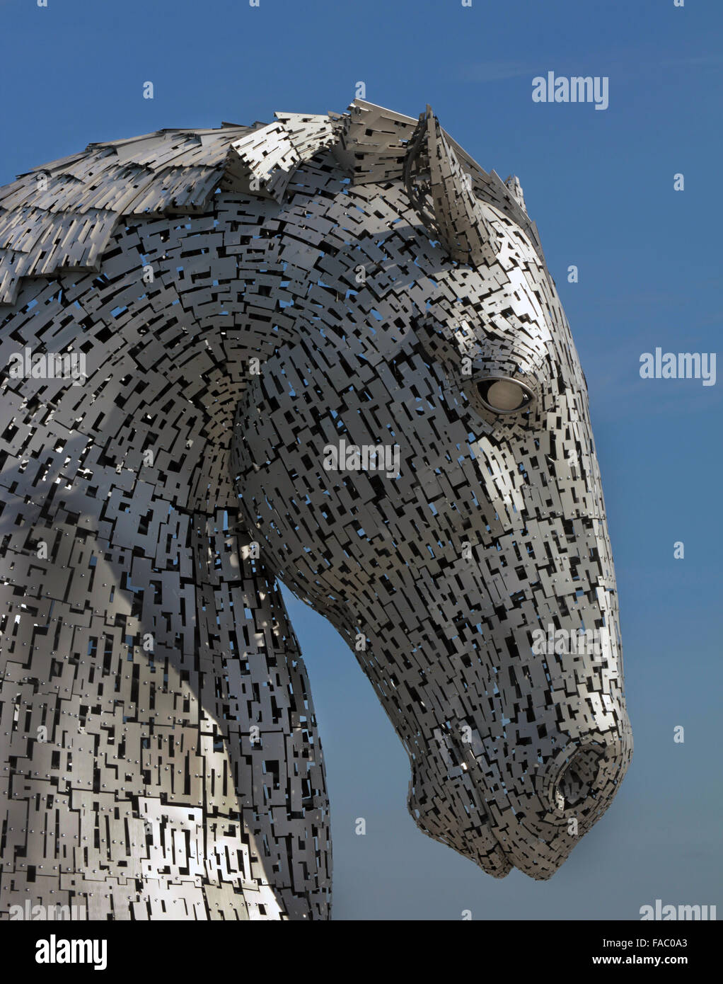 Detail of the head of one of the huge Kelpie horses at Falkirk, Scotland. It is the work of Andy Scott. Stock Photo