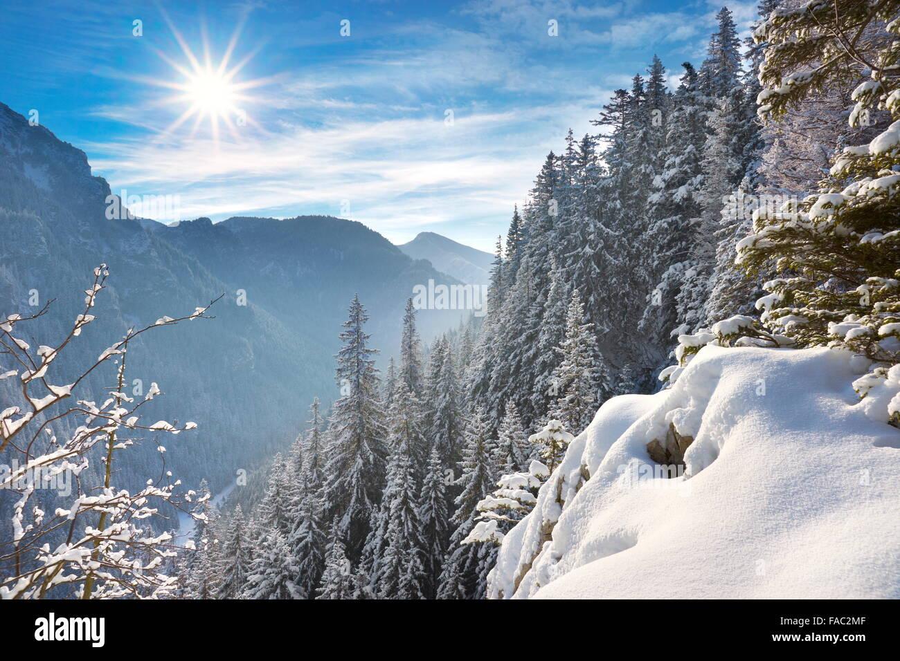 Winter snow landscape, Tatra Mountains, Poland - Stock Image