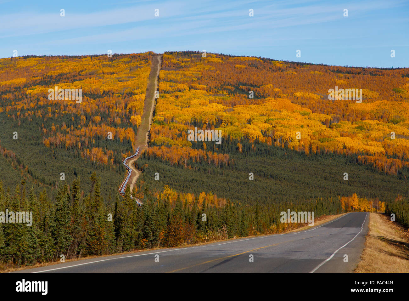 Alyeska Pipeline along the Dalton Highway, Alaska. - Stock Image