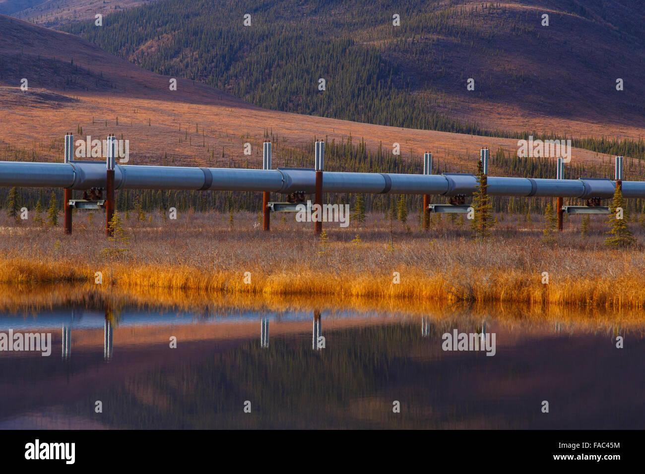 Alyeska Pipeline from the Dalton Highway, Alaska. - Stock Image
