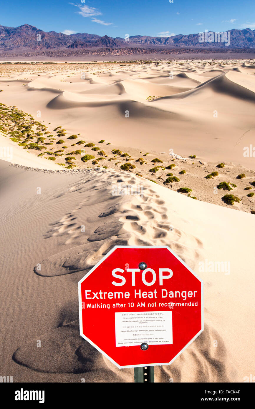The Mesquite flat sand dunes in Death Valley which is the lowest, hottest, driest place in the USA, with an average - Stock Image
