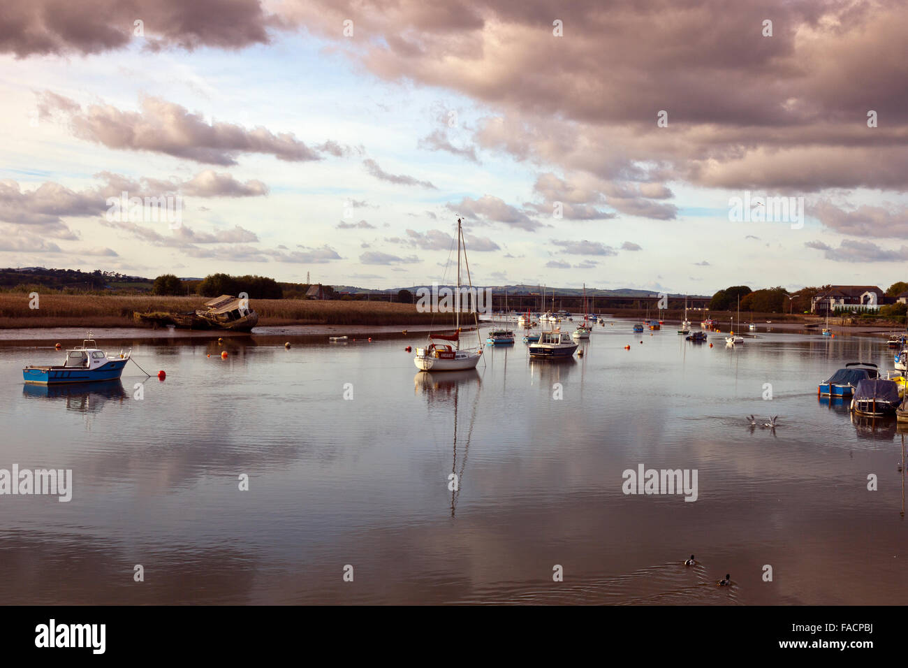 A collection of yachts and motor boats and their reflections moored in the River Exe at Topsham, Devon, England, - Stock Image