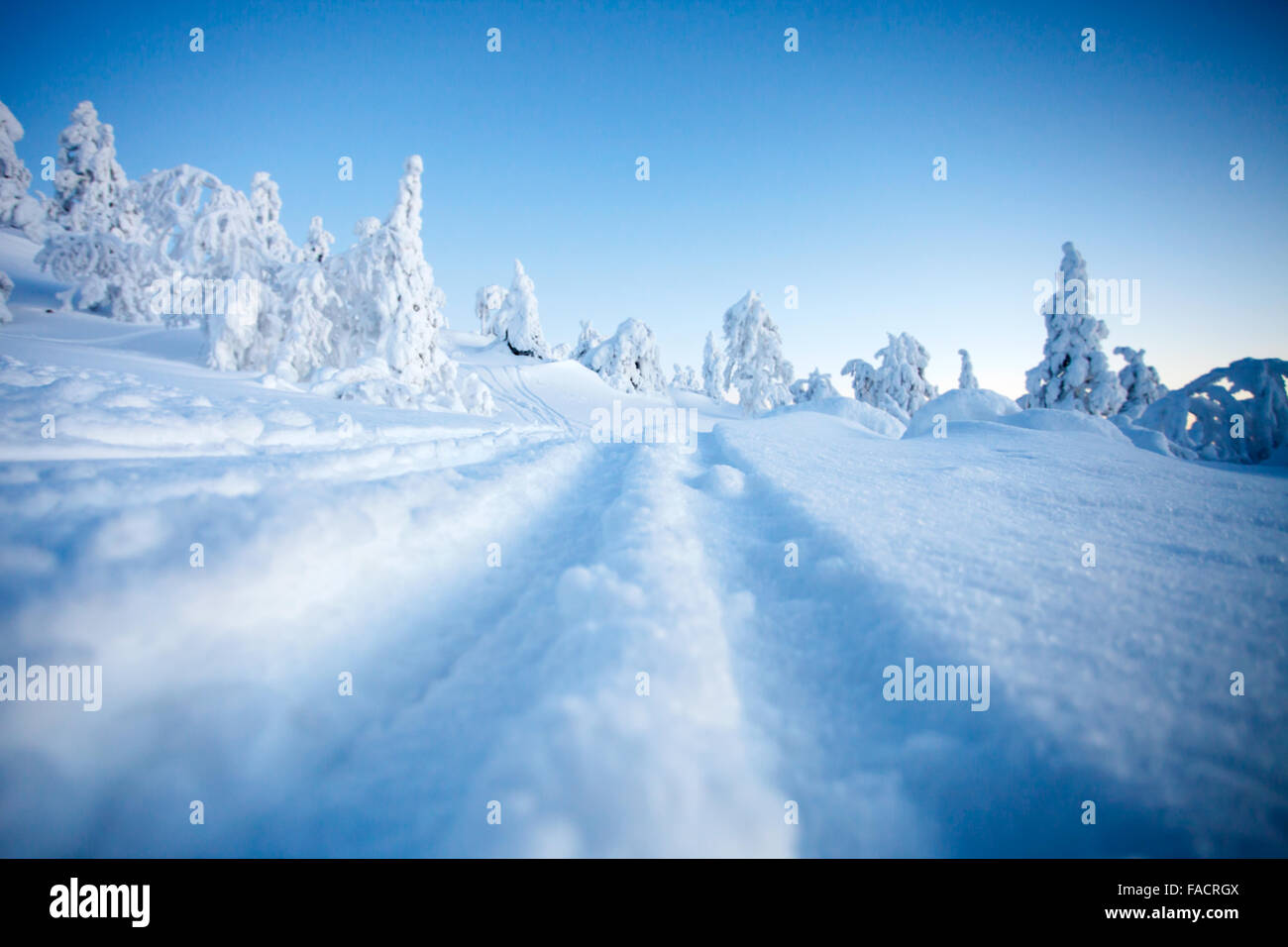 Cold winter in Lapland Finland Stock Photo