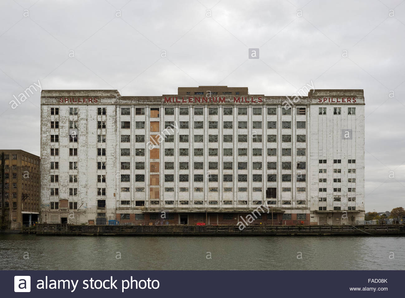 The derelict Millennium Mills buildings facing the Royal Docks: West Silvertown: London. - Stock Image