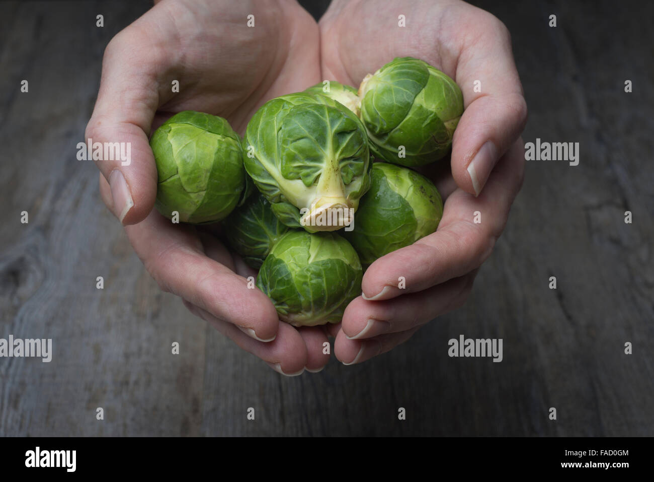 Handful of brussel sprouts - Stock Image