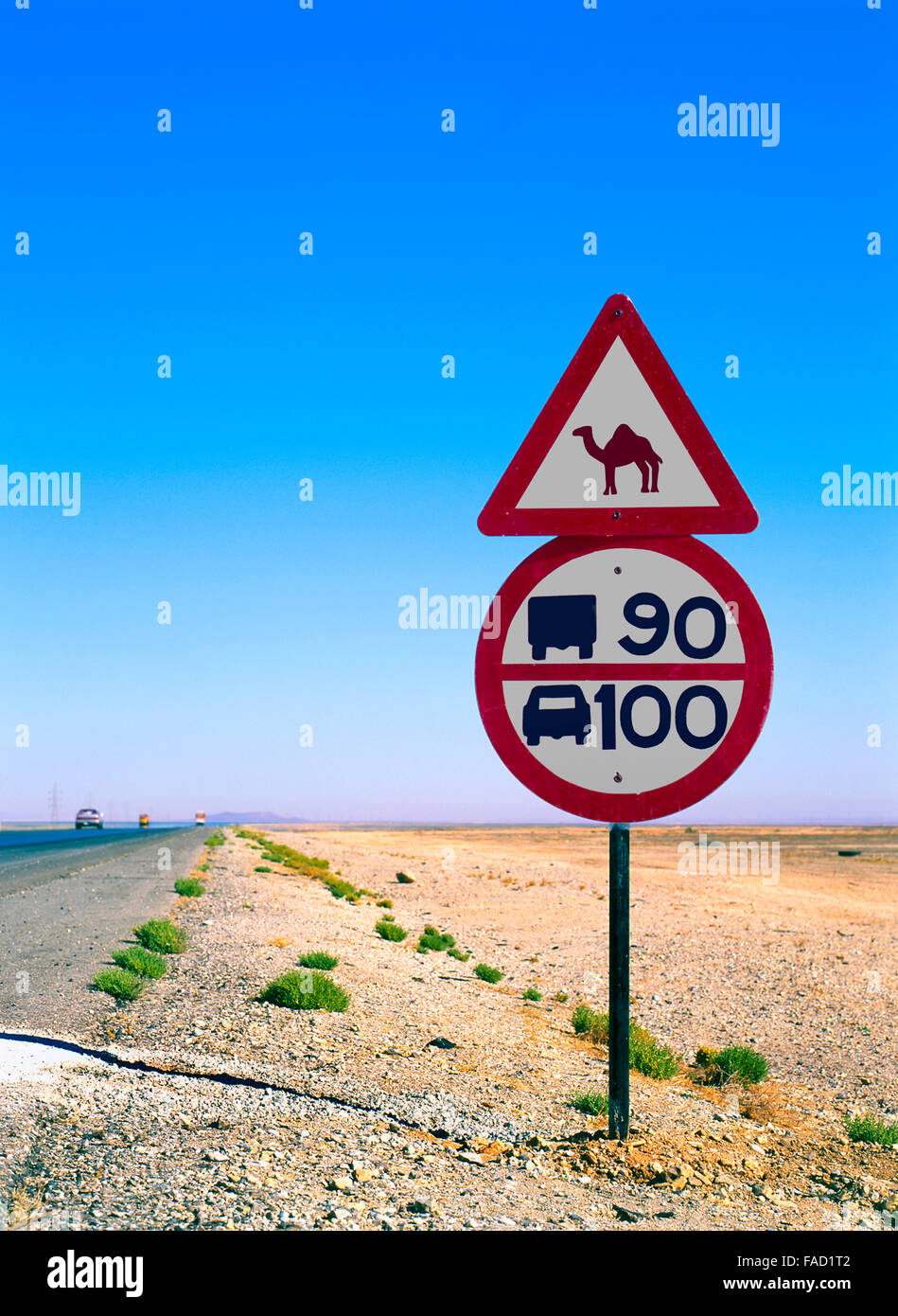 road sign with camel in the middle of the desert Stock Photo