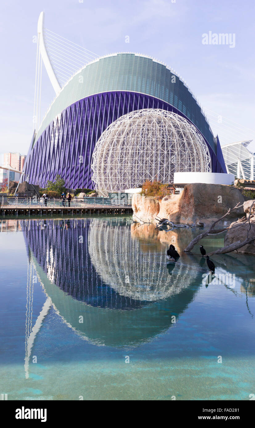 Valencia, Spain. The City of Arts and Sciences.  L'Àgora - Stock Image