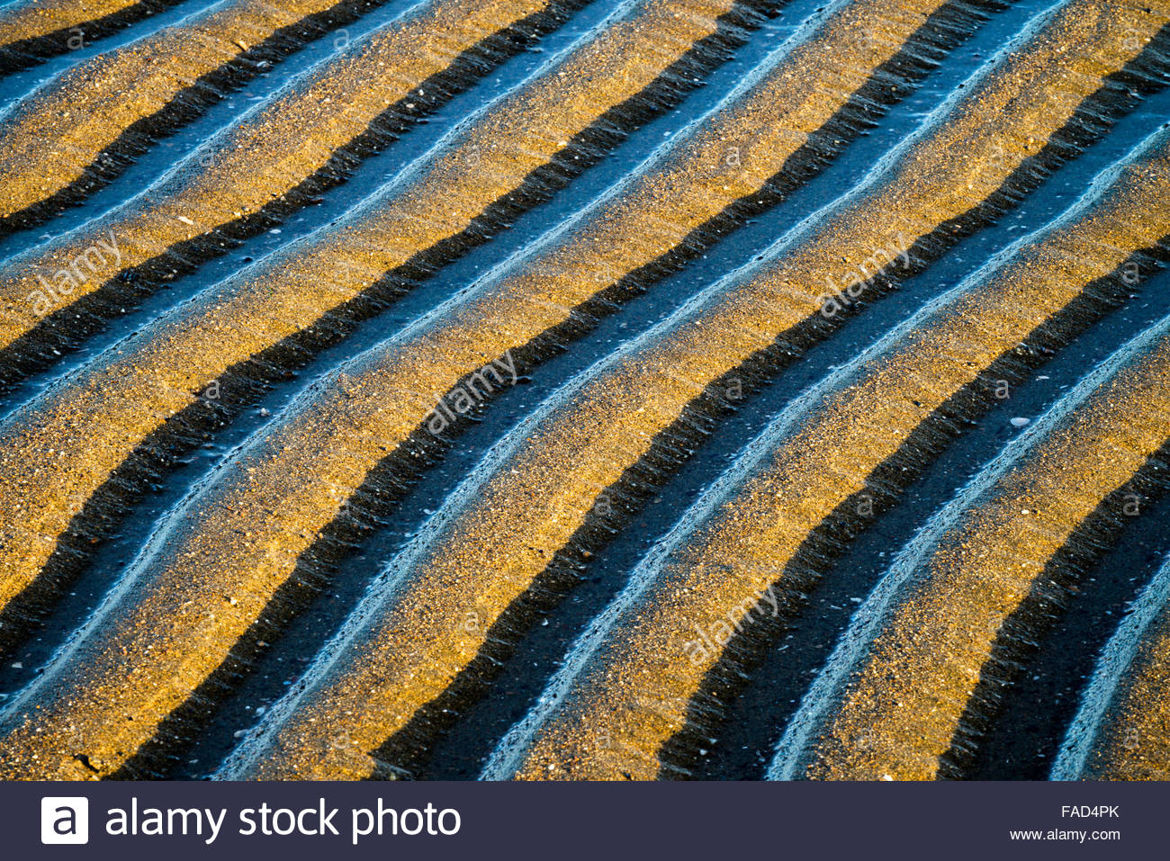 Sand Pattern Abstracts, Alameda, California - Stock Image