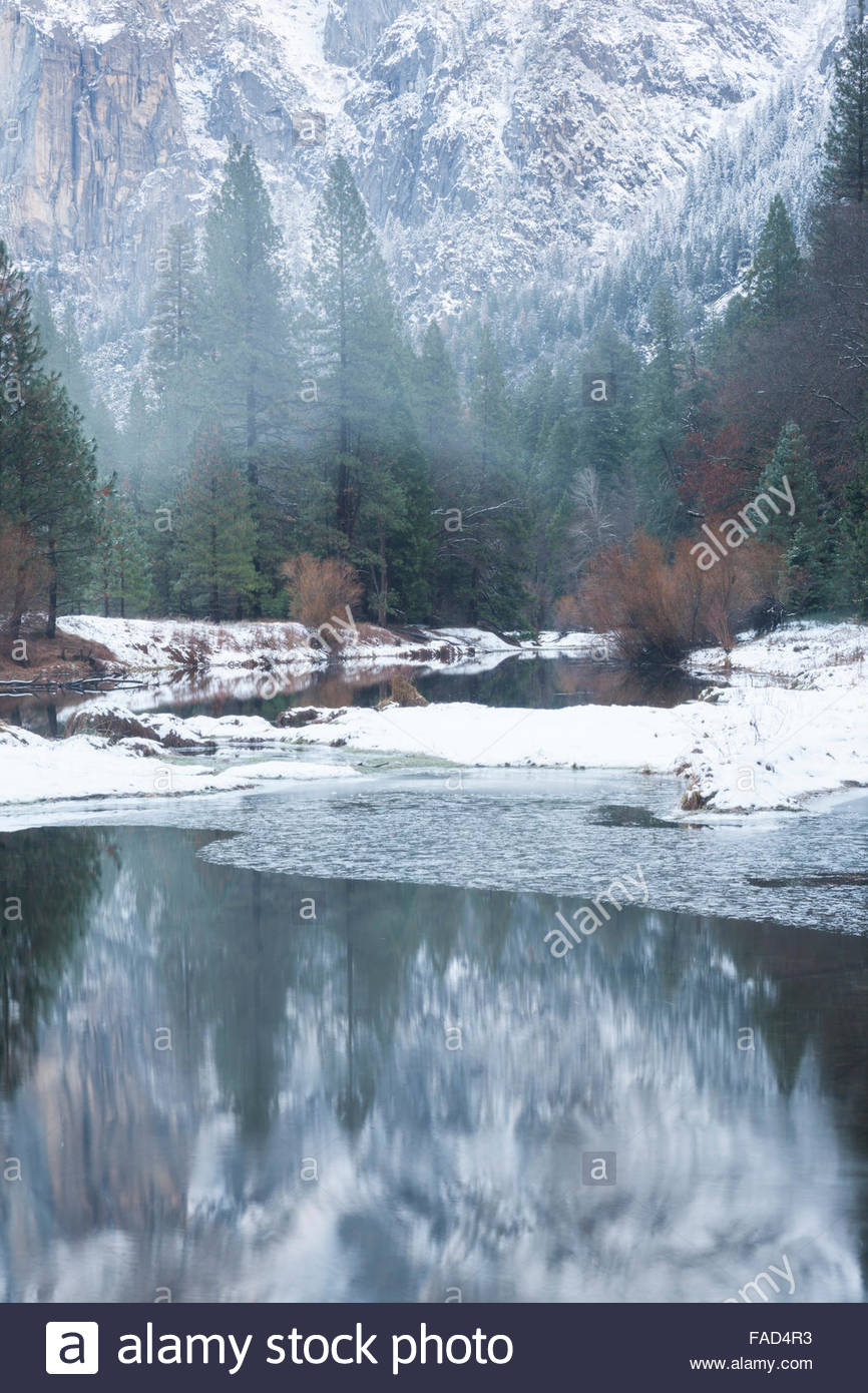 Merced River Foggy Afternoon in Late Fall, Yosemite National Park, California - Stock Image