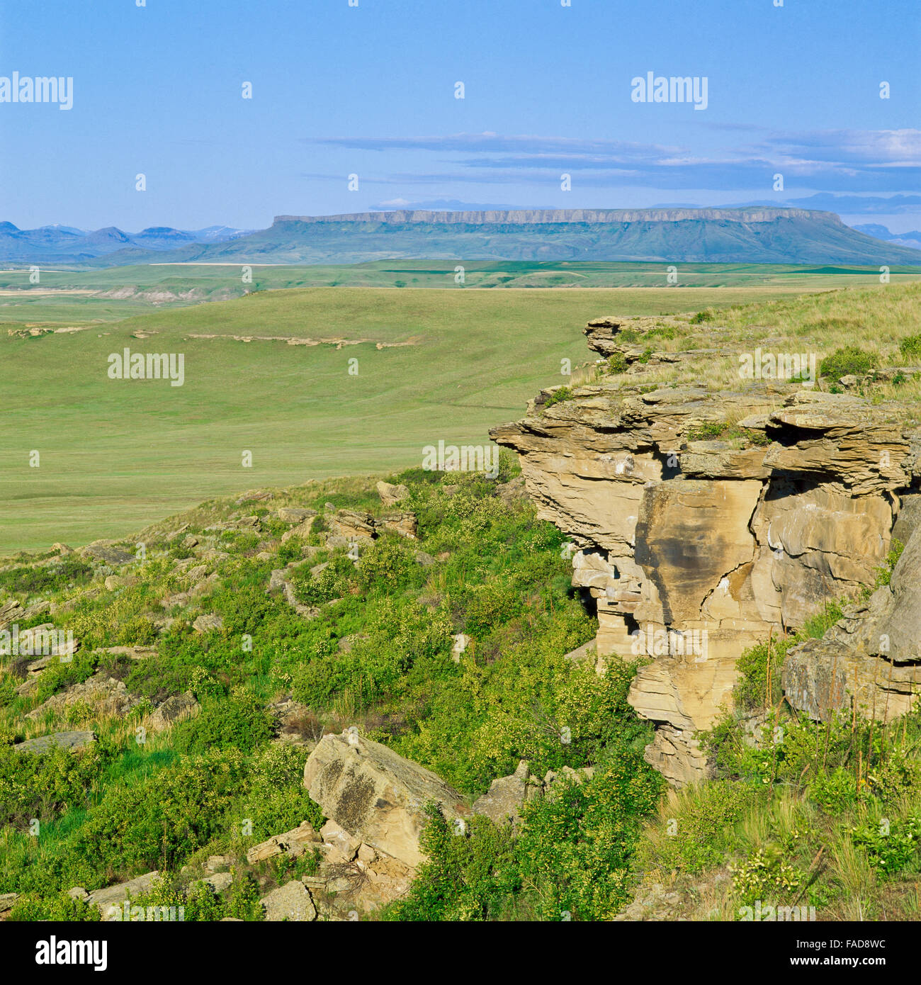 first peoples buffalo jump state park (ulm pishkun) and square butte near ulm, montana - Stock Image