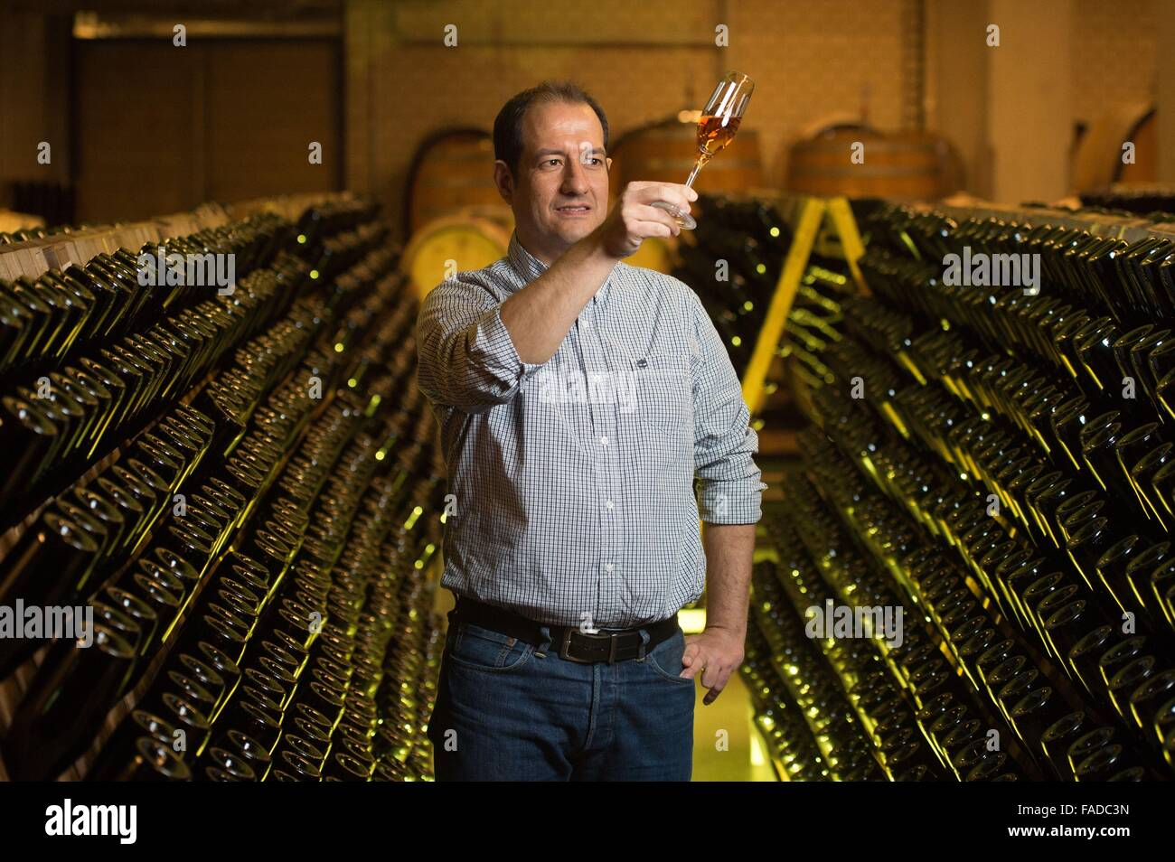 Radebeul Germany. 22nd Dec 2015. Cellar master Juergen Aumueller holding a glass  sc 1 st  Alamy & Cellar Master Glass Stock Photos u0026 Cellar Master Glass Stock Images ...
