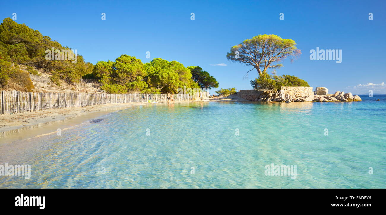 Palombaggia Beach, Porto-Vecchio, East Coast of Corsica Island, France Stock Photo