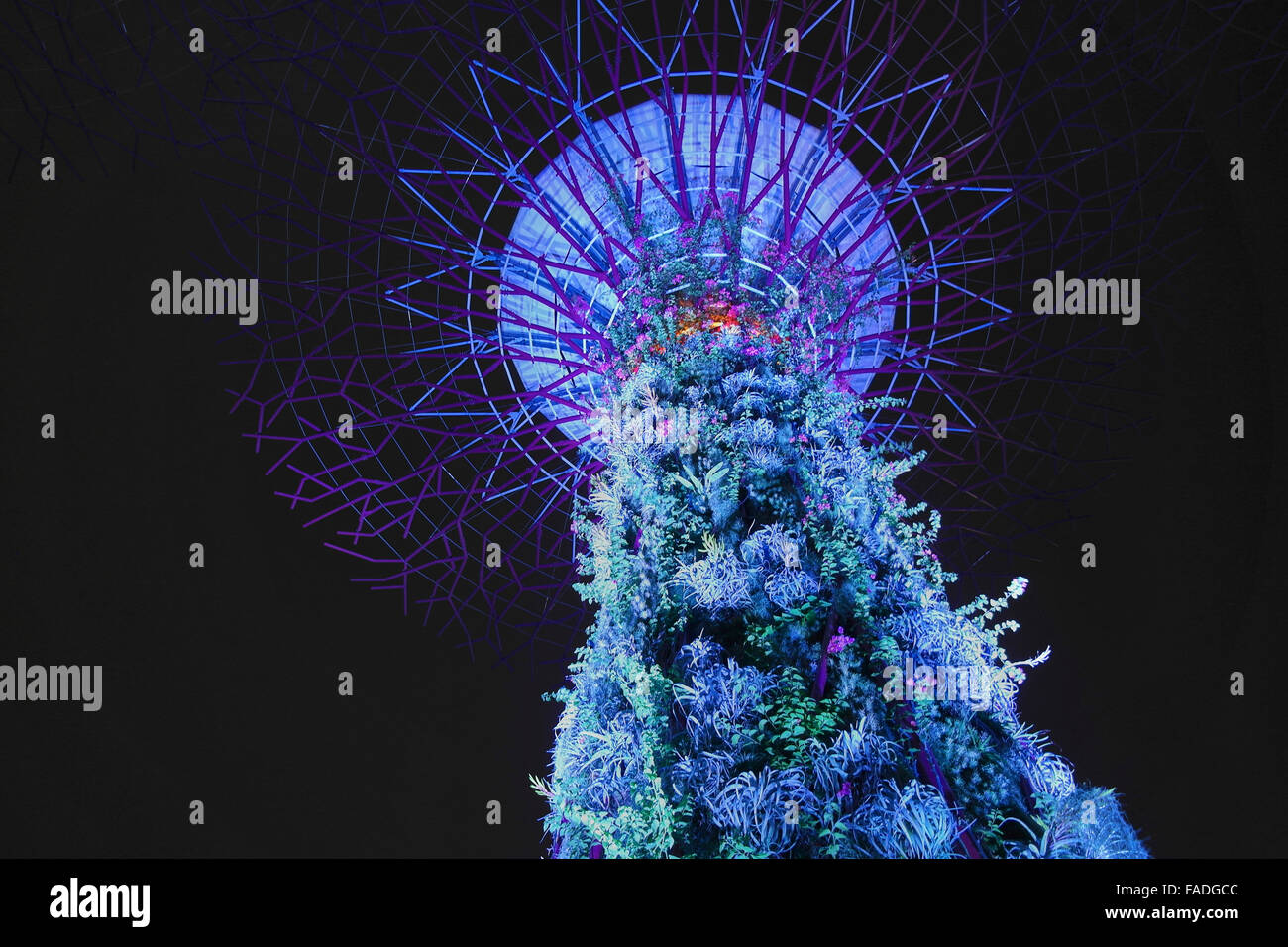 Super Tree at garden by the Bay in Singapore Marina - Singapore - Stock Image