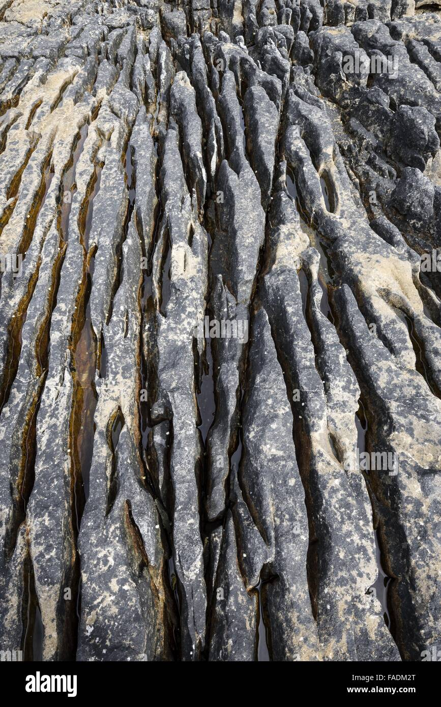 Weathered volcanic rock in the bay of Elgol, Western Highlands, Isle of Skye, Scotland, United Kingdom - Stock Image